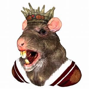 King Rat Free Stock Photo - Public Domain Pictures