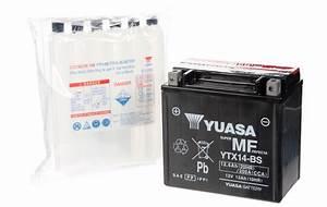 SPRINT ST 955i YUASA YTX14-BS AGM-GEL Sealed Maintenance ...