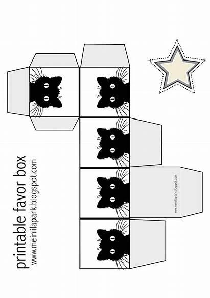 Box Cat Favor Printable Paper Boxes Printables