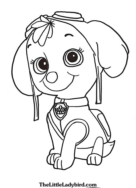 paw patrol coloring pages sky  print coloring  kids