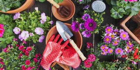 Cute Gardening Tools & Supplies