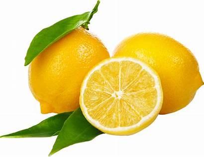 Lemon Fruit Transparent Background Clipart Fruits Citrus