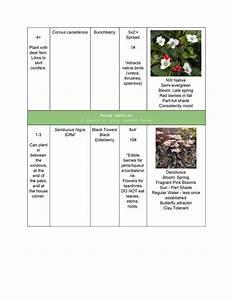 Diy, Plant, List, Example, -2