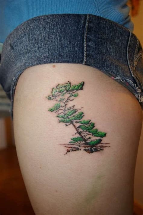 white pine tattoo