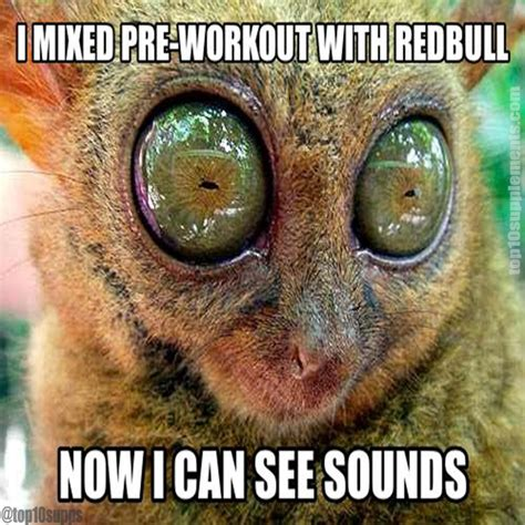 I Can See Sounds Meme - i can see sounds funnystuff preworkout fitness memes pinterest