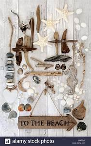 Mobile Bois Flotté : la plage rustique signer avec les coquillages perles ~ Farleysfitness.com Idées de Décoration