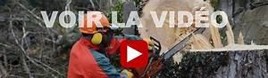 Abattage D Arbres Autorisation : abattage d arbres laval blainville saint jerome ~ Premium-room.com Idées de Décoration