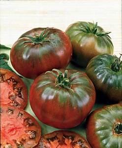 Tomate Noir De Crimée : tomate 39 noire russe 39 tomates noir et potager ~ Dailycaller-alerts.com Idées de Décoration