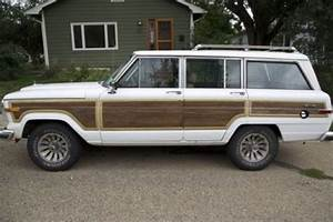 Purchase Used  U0026 39 87 Grand Wagoneer Clean  Sharp  Classic