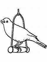 Canary Coloring Bird Cage Pages Birds Printable Getcolorings Template sketch template