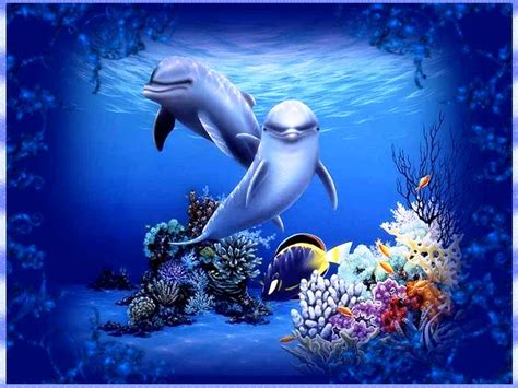 Free Animated Wallpaper For Laptop - free dolphin wallpapers for desktop wallpaper cave