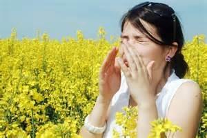 Seasonal Allergies and Acupuncture - acupuncture victoria bc ...  Allergy Acupuncture