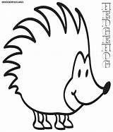 Hedgehog Coloring Pages sketch template