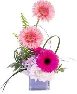 Gerbera Blush Flower Arrangement In Gilbert  Az