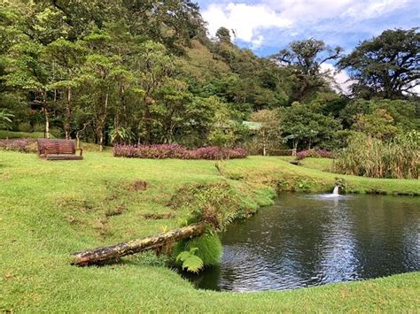 Check online for tour packages and times. Costa Rica Trip Guide (Heredia) - 2020 All You Need to Know BEFORE You Go (with Photos ...