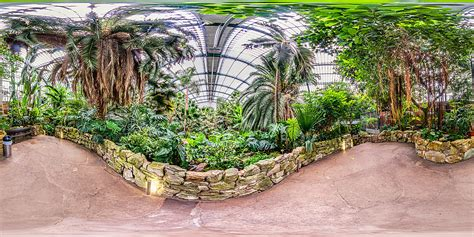 Botanischer Garten Wien Palmenhaus by Palmengarten Frankfurt Palmenhaus Botanischer Garten