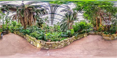 Palmengarten Frankfurt  Palmenhaus  Botanischer Garten