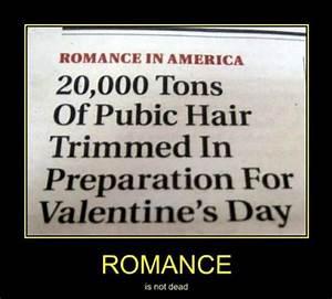 I Hate Valentines Funny Quotes. QuotesGram