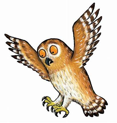 Gruffalo Broom Owl Characters Clipart Trail Transparent