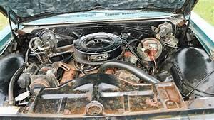 Big Survivor  1966 Pontiac Catalina