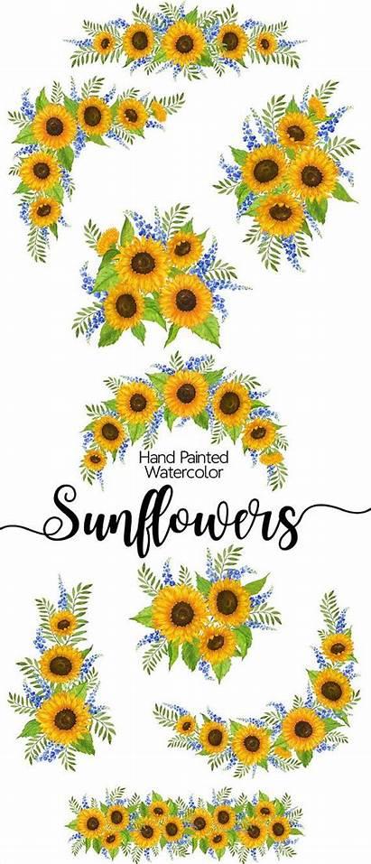 Sunflower Watercolor Clip Border Sunflowers Clipart Flower
