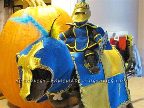 Original Homemade Dog Costume