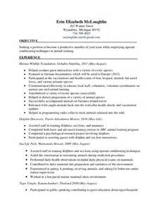 sle resume information technology entry level home health aide hiring resume sales aide lewesmr