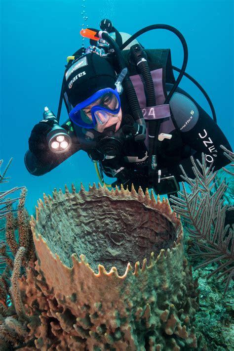 Mares Dive S U P E R Part 2 Mares Eos 12rz Dive Torch
