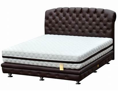 Bed Spring Bigland Lem Platinum Chicago Kuning