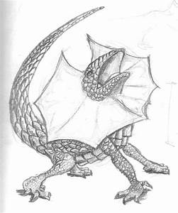 How to draw frilled lizards