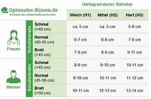 Nackenstützkissen Für Seitenschläfer : die richtige kissenh he f r dein kopfkissen optimales das beste kopfkissen f r dich ~ Orissabook.com Haus und Dekorationen