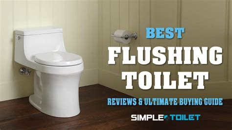 [recommended] Best Flushing Toilet Of 2018  Guide & Reviews