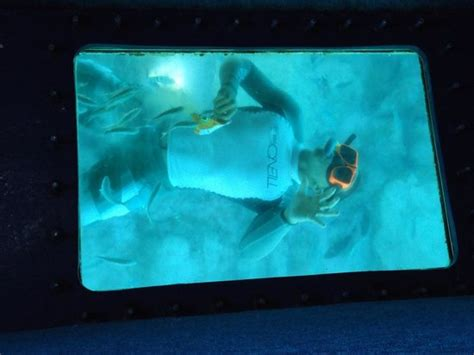 Glass Bottom Boat And Snorkeling by Glassbottom Boat Picture Of Discovery Snorkeling And