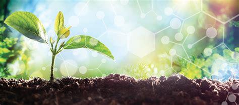 green chemistry chemical stewardship certificate program
