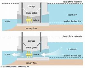 All You Need to Know about Tidal Power | TheEarthProject.com