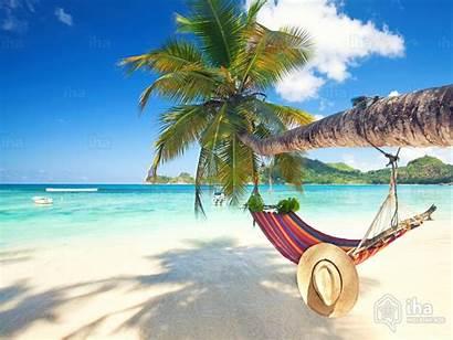 Beach Palm Holiday Rentals Villa Vacation Direct