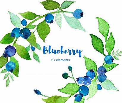 Blueberry Clipart Watercolor Border Clip Blueberries Webstockreview