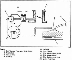 97 Firebird 3 8 Engine  Need Vacuum Diagram From Vapor Canister Located In The Rear Of The Vehicle