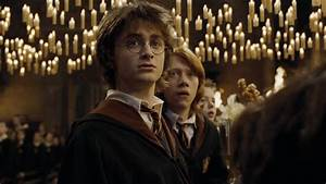 the most harry potter we never got to see