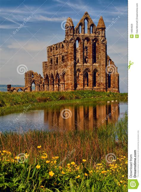 whitby abbey royalty  stock images image