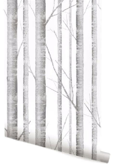 white birch tree wallpaper gallery