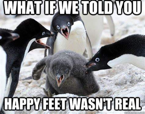 Meme Penguin - 24 memes that prove penguins are the funniest animals on earth cuteness