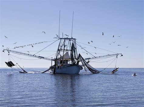 Buy Shrimp Off The Boat Louisiana 2017 gulf coast shrimp boat for sale autos post