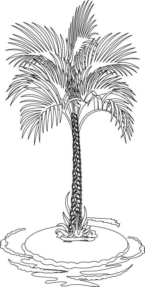 imprimante cuisine coloriage un palmier dory fr coloriages