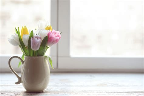 vase für tulpen tulpen wachsen in der vase 187 ist das normal