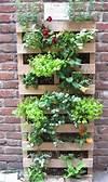 25 DIY Pallet Garden Projects   Pallet Furniture Plans pallet vertical garden project