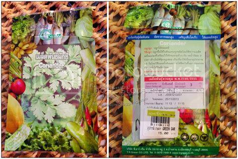 ปลูกผักไร้ดิน : ผักชีไทย ผักชีลาว กุยช่าย คึ่นช่าย ปักชำ ...