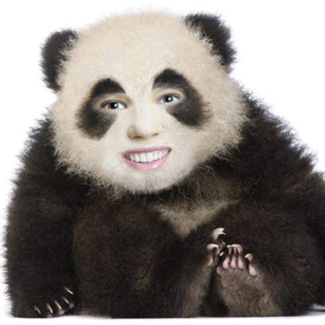 put  face   panda body animal face  hole montage