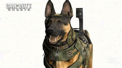Riley Duty Call Ghosts Dog Modern Warfare