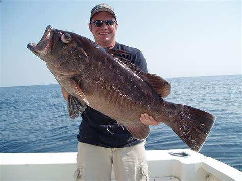 grouper record snowy fish fishing florida sport records ferguson jason hookedup vbsf gemerkt von